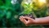 Recycle, Reduce, Reuse- The three R's to raise an environmental friendly child