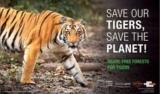 Save Tigers!! Save Environment!!